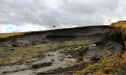Thawing permafrost may release more CO2 than previously thought, study suggests | Katie Willis