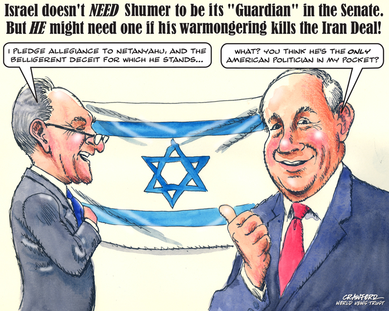 Toon Schumer Has Loyalty Issues Gregory Crawford