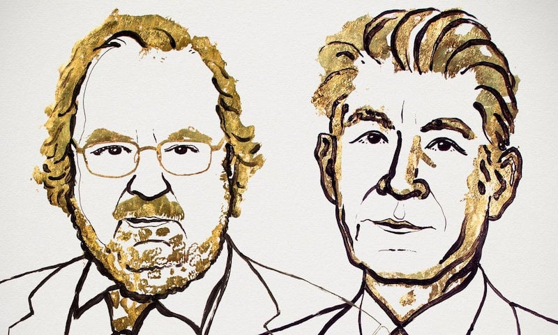 An illustration of James P. Allison and Tasuku Honjo provided by the Nobel Assembly. Photograph: Nobel Assembly