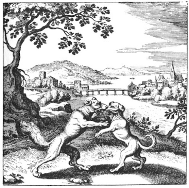 The dog and the wolf, from the Book of Lambspring